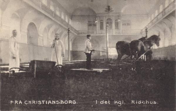 Christiansborg Ridebane - 4